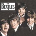 The Beatles – глазами звезд московского блюза.Проект Левана Ломидзе и группы Blues Cousins