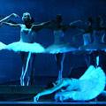 IV Международный фестиваль балета в Кремле. Лебединое озеро