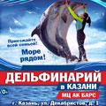 Дельфинарий. Шоу программа